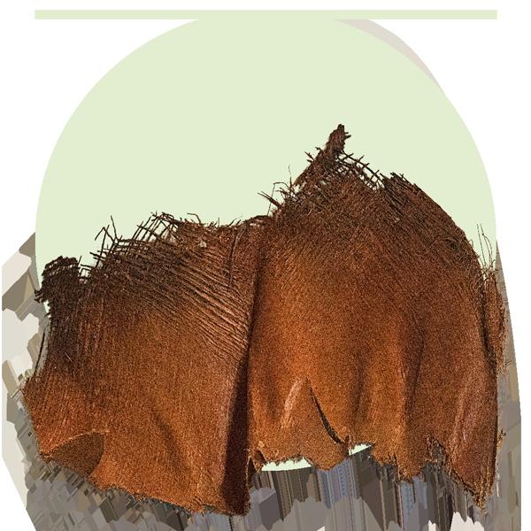 Kokosfaser