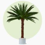Areca Palme Kunstpalme Dekopalme